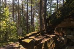 Второе захоронение Мецякюле (ныне Молодежное)