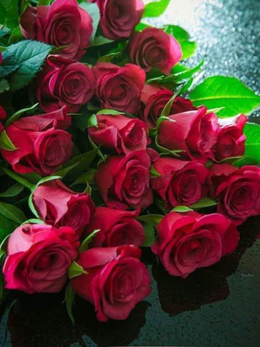 К 150-летию со дня рождения И.А. Бунина. «Ты раскрой, мне природа, объятия!»