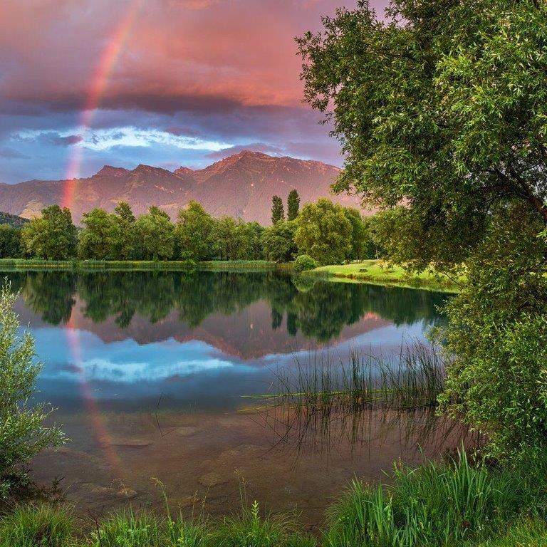 «Так знать и любить природу, как умеет Бунин, мало кто умеет…»