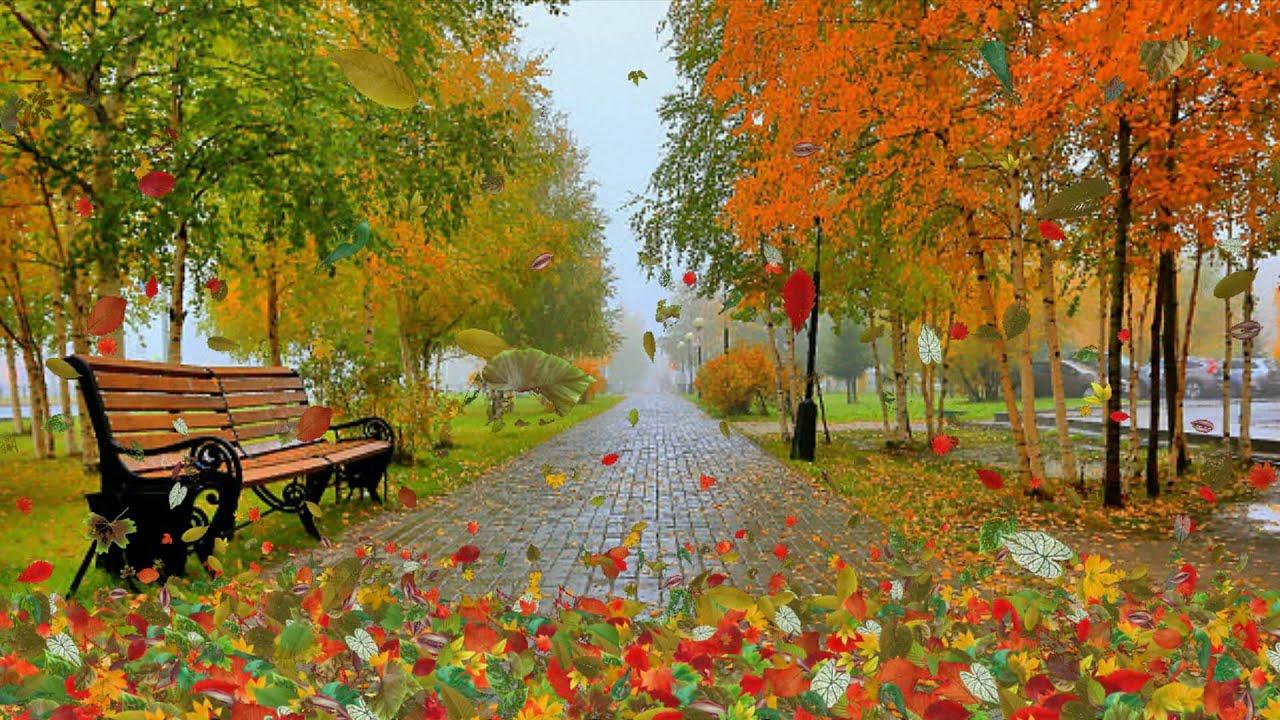 К 150-летию со дня рождения Бунина  Цикл «Ты раскрой мне, природа, объятие»  «Шумели листья, облетая…»
